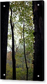 Vertical Limits Acrylic Print