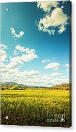 Vertical Plains Acrylic Print