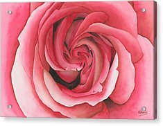 Vertigo Rose Acrylic Print by Ken Powers