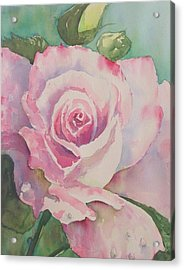 Very Rose  Acrylic Print