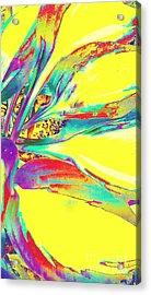 Vibrant Fascination  Acrylic Print by Rachel Hannah