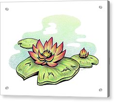 Vibrant Flower 2 Water Lily Acrylic Print