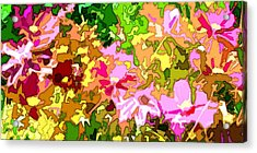 Vibrant Flower Array Abstract Acrylic Print by Linda Mears
