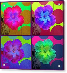 Vibrant Flower Series 2 Acrylic Print by Jen White