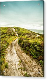 Vibrant Green Hills And Ocean Tracks Acrylic Print