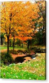Vibrant October Acrylic Print