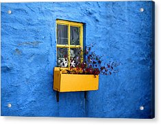 Vibrant Acrylic Print by Happy Home Artistry