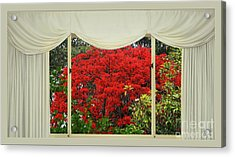 Acrylic Print featuring the photograph Vibrant Red Blossoms Window View By Kaye Menner by Kaye Menner
