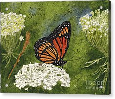 Viceroy Butterfly On Queen Anne's Lace Watercolor Batik Acrylic Print