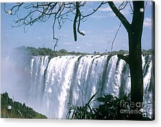 Victoria Falls Acrylic Print by Photo Researchers, Inc.