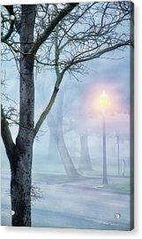 Victory Park In Fog Acrylic Print
