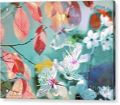 Viento De Primavera Acrylic Print by Alfonso Garcia