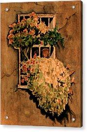 View From A Roman Window Acrylic Print by Dan Earle