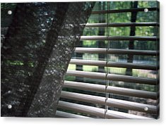 Acrylic Print featuring the photograph View From A Window by Wanda Brandon