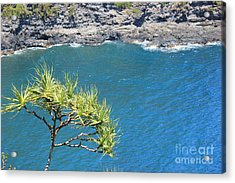 Acrylic Print featuring the photograph View From Above by Wilko Van de Kamp