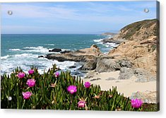 View From Bodega Head In Bodega Bay Ca - 3 Acrylic Print