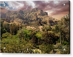 View From Boyce Thompson Acrylic Print by Anne Rodkin