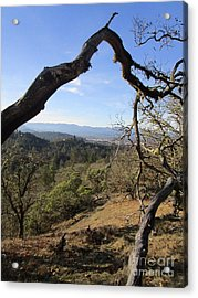 View From Cathedral Hills Acrylic Print