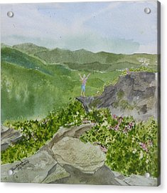 Acrylic Print featuring the painting View From Craggy Gardens - A Watercolor Sketch  by Joel Deutsch