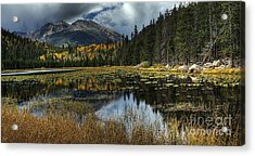 View From Cub Lake Acrylic Print by Pete Hellmann