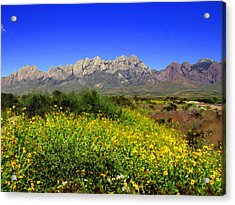 View From Dripping Springs Rd Acrylic Print by Kurt Van Wagner