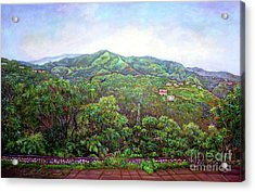 View From Neita's Nest  Acrylic Print