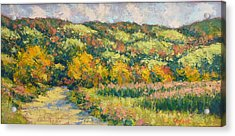 View From Pine Plains Acrylic Print by Gene Cadore