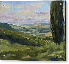 View From Sienna Acrylic Print by Jay Johnson
