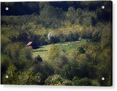 View From The Pond At The Hacienda Acrylic Print by David Lane