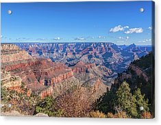 Acrylic Print featuring the photograph View From The South Rim by John M Bailey