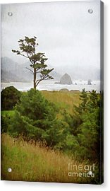 View Of Cannon Beach In The Fog Acrylic Print