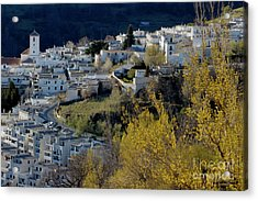 View Of Capileira Village In The Alpujarras Mountains In Andalusia Acrylic Print