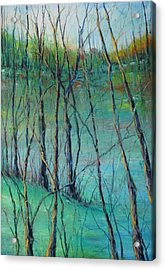 View Of Nature's Canvas Acrylic Print