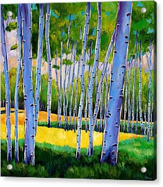 View Through Aspen Acrylic Print by Johnathan Harris