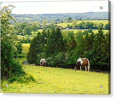 View To Kill For Acrylic Print by Linda Corby