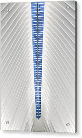 View To World Trade Center Wtc  Acrylic Print by Susan Candelario