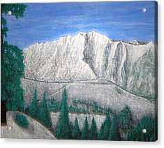 Viewfrom Spruces Acrylic Print by Michael Cuozzo