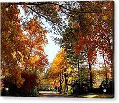 Village Street In Autumn Acrylic Print by Susan Savad