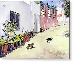 Village Street With Cats In Hortichuelas Acrylic Print