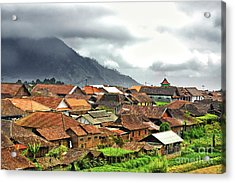 Acrylic Print featuring the photograph Village View by Charuhas Images