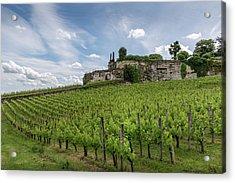 Village Vines Acrylic Print