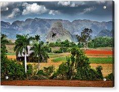 Vinales. Pinar Del Rio. Cuba Acrylic Print by Juan Carlos Ferro Duque
