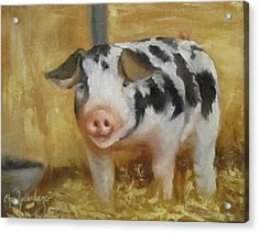 Acrylic Print featuring the painting Vindicator The Spotted Pig by Cheri Wollenberg