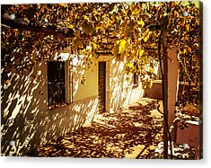 Vine-covered Patio. Andalusia. Spain Acrylic Print by Jenny Rainbow