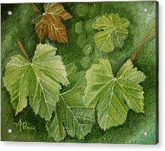 Vine Leaves Acrylic Print