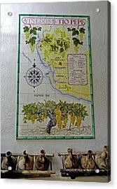 Vinedos Tio Pepe - Jerez De La Frontera Acrylic Print