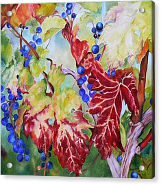 Vines In The Fall Acrylic Print by Nadine Dennis