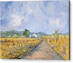 Vineyard Farmhouse Acrylic Print by Virginia McLaren