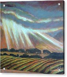 Vineyard Rain Acrylic Print by Kip Decker