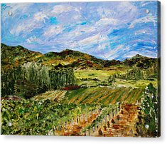 Vineyard Solitude Acrylic Print by Deborah Gall